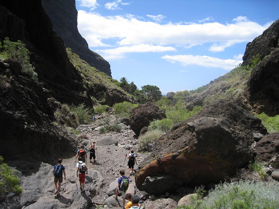 Canary Islands Best Hiking