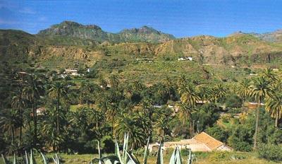 Tirajana Ravine
