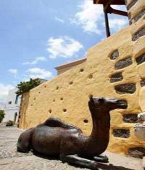 Escuela Rural Casa de Los Camellos, Agüimes