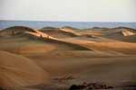 Maspalomas Dunes Natural Reserve