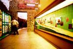 Guayadeque Museum