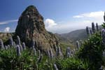 Natural Parks in La Gomera