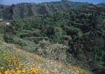 Barranco Oscuro Natural Integrated Reserve