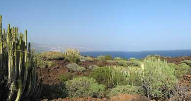 Malpaís de La Arena Natural Monument