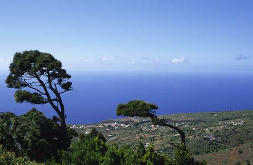 Paisaje en Puntagorda La Palma