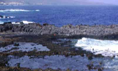 Playa Charco de las Palomas