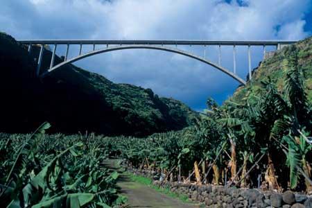 Puente de los Sauces, La Palma