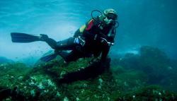 Diving in La Gomera