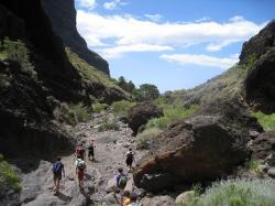 Escalada y senderismo en Tenerife