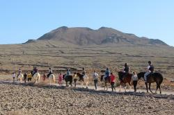 Paseos a caballo en Fuerteventura