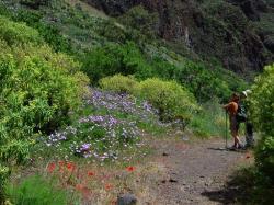 Senderismo en Gran Canaria
