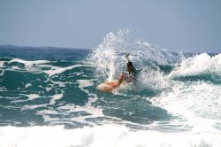 Surf en Tenerife