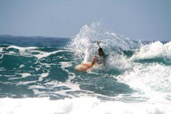 Surf in Tenerife